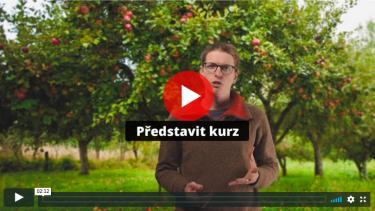 Videokurz zde: https://www.kyselove.cz/online-kurzy/vychovny-rez-ovocnych-stromu