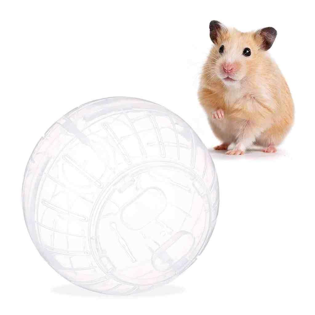 Jouet roue boule pour rongeur hamster