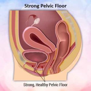 strong pelvic floor min 300x300