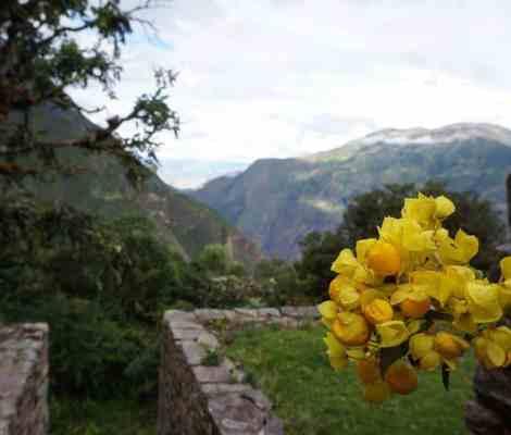 Les terrasses de Choquequirao. 11