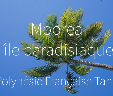 Polynésie Française - Moorea #vidéo 5