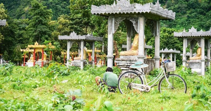 Entretien minutieu des bouddhas. 1