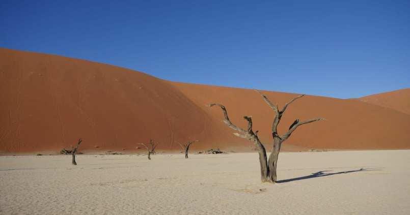 Tourisme en Namibie : les 6 incontournables de notre road trip 1
