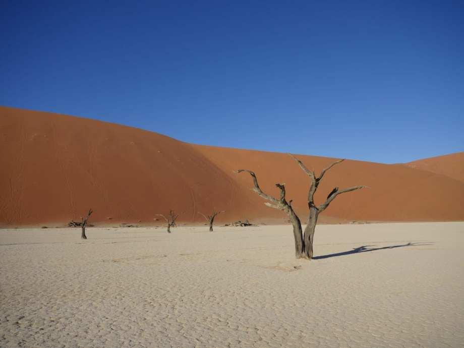 Tourisme en Namibie : les 6 incontournables de notre road trip 11