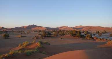 Sesriem : explorer les dunes de Sossusvlei 9