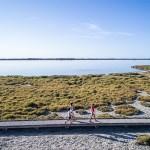 Cap sur Sète – Archipel de Thau