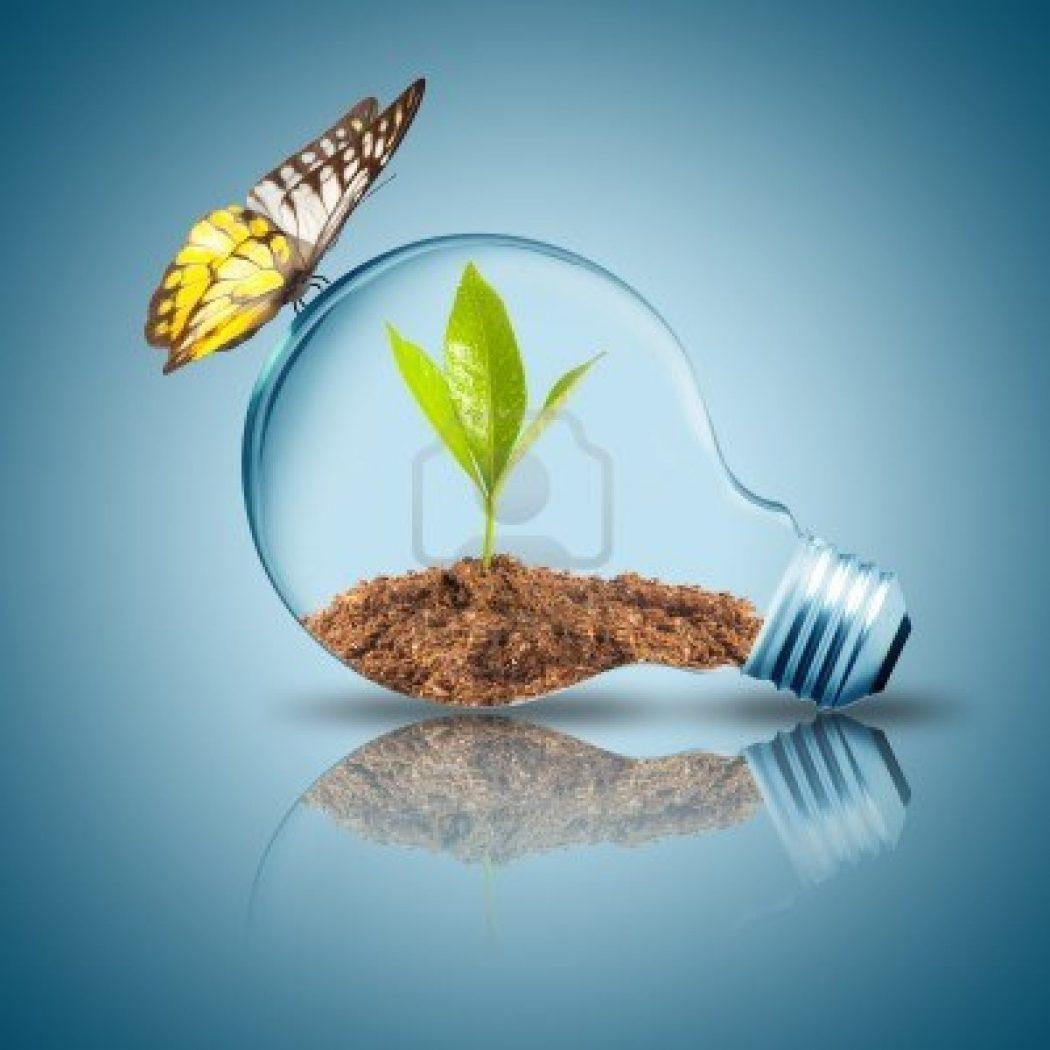 Types Light Bulb