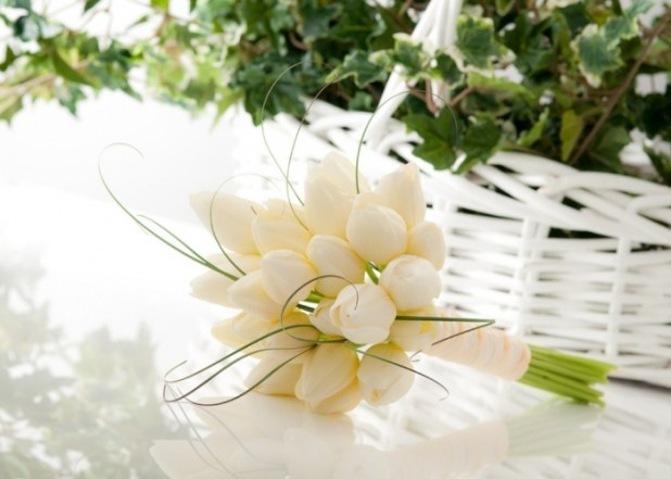 white-tulips-for-wedding-bouquet How to Increase the Beauty of White Tulip Flowers