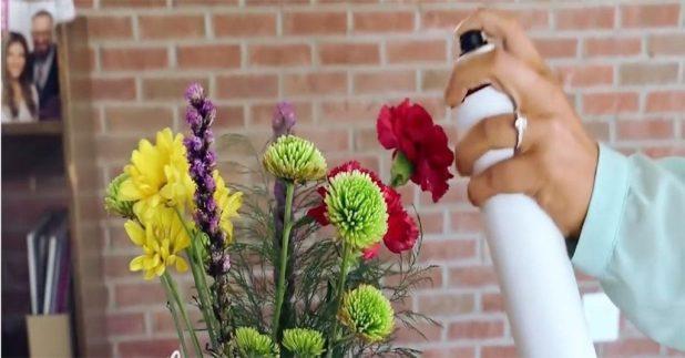 Hairspray-Preservation 7 Tricks to Make Flowers Last forever ...