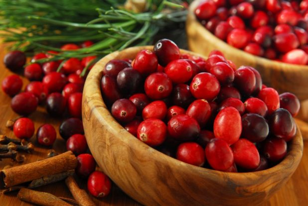 Cranberry2 6 Unique Healing Products That You Must Try