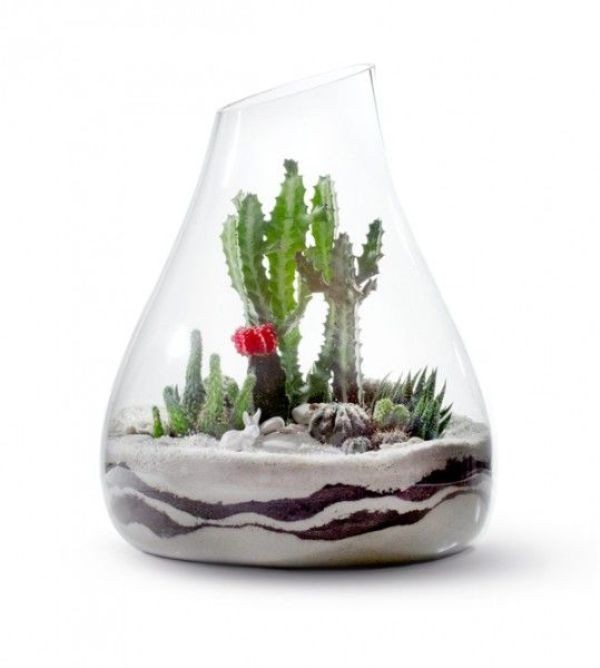 terrarium 15 Newest Home Decoration Trends You Have to Know for 2017