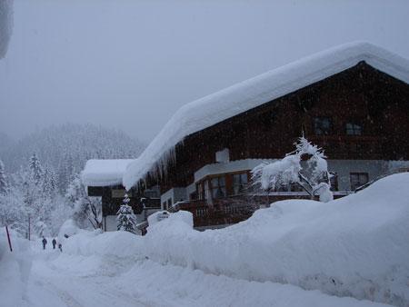 Winter of dream