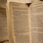 shortlist-of-romanian-authors-whose-books-you-should-consider-reading-part-i