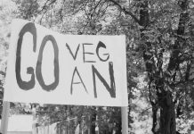 save-the-animals-save-the-planet-go-vegan