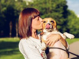 What dog breed you should get