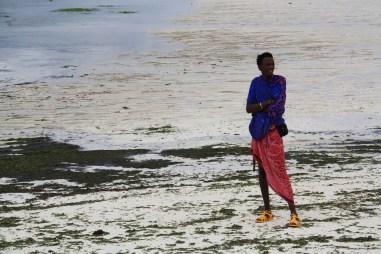 Miestny nadháňač, ktorých bolo na Zanzibare neúrekom.