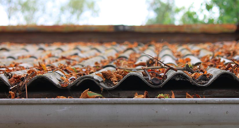 Image Result For Springfield Roofing Company