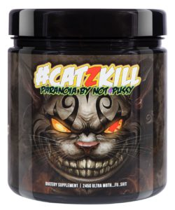 #catzkill kaufen bpspharma Trainingsbooster test supplement hardcore booster test dmha booster