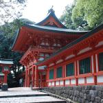 大宮氷川神社はパワースポット?大いなる宮のエネルギーの秘密とは?