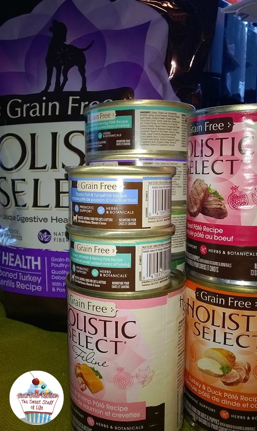 holistic-can-pet-food-mdr