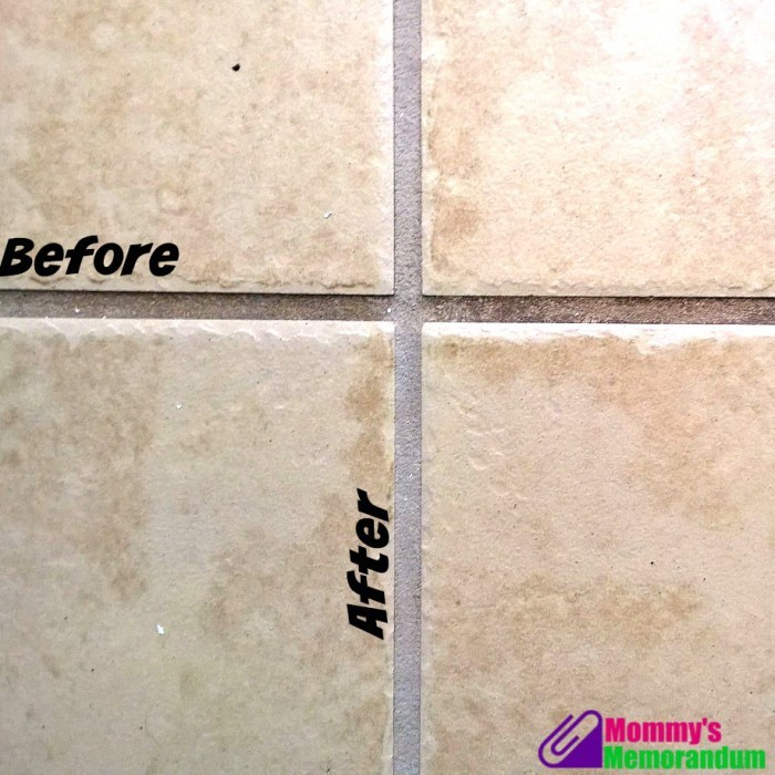 dupray grout clean