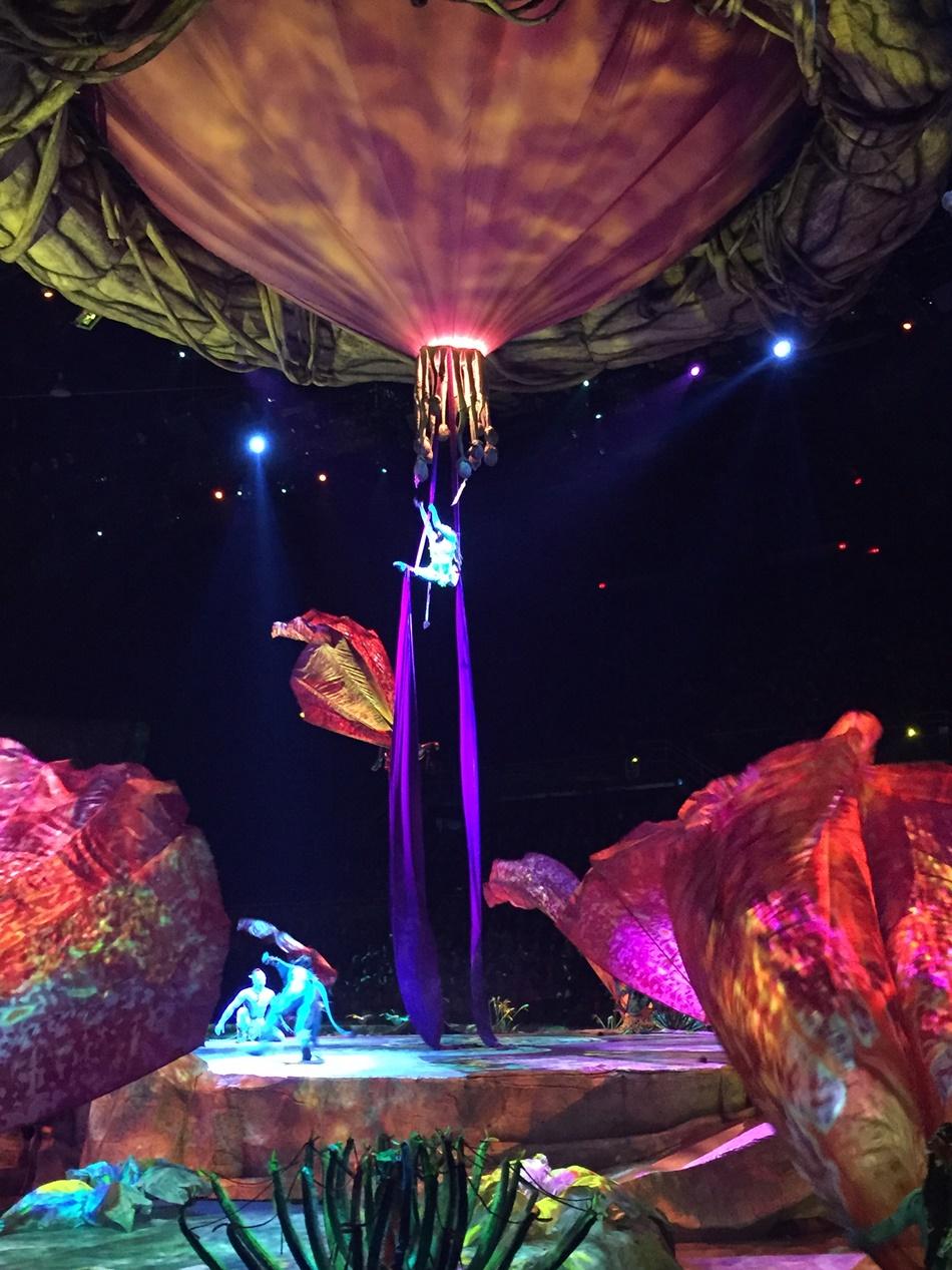 Cirque du Soleil's Toruk – The First Flight