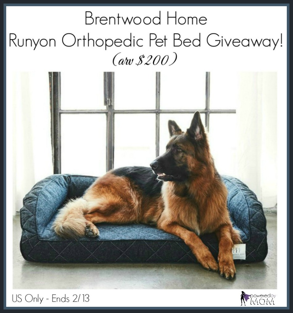 Brentwood Home Pet Bed Giveaway