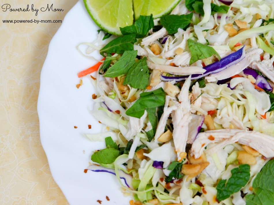 vietnamese chicken salad 13