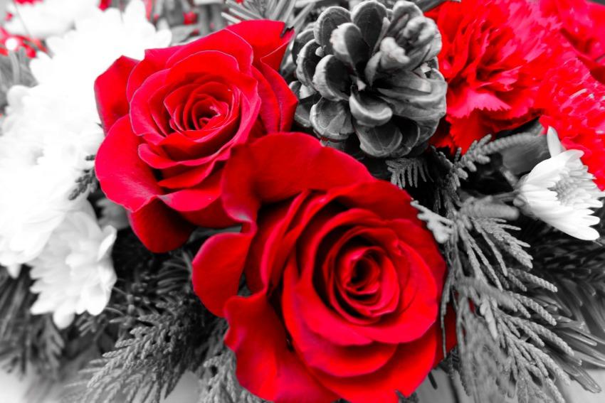 Teleflora roses