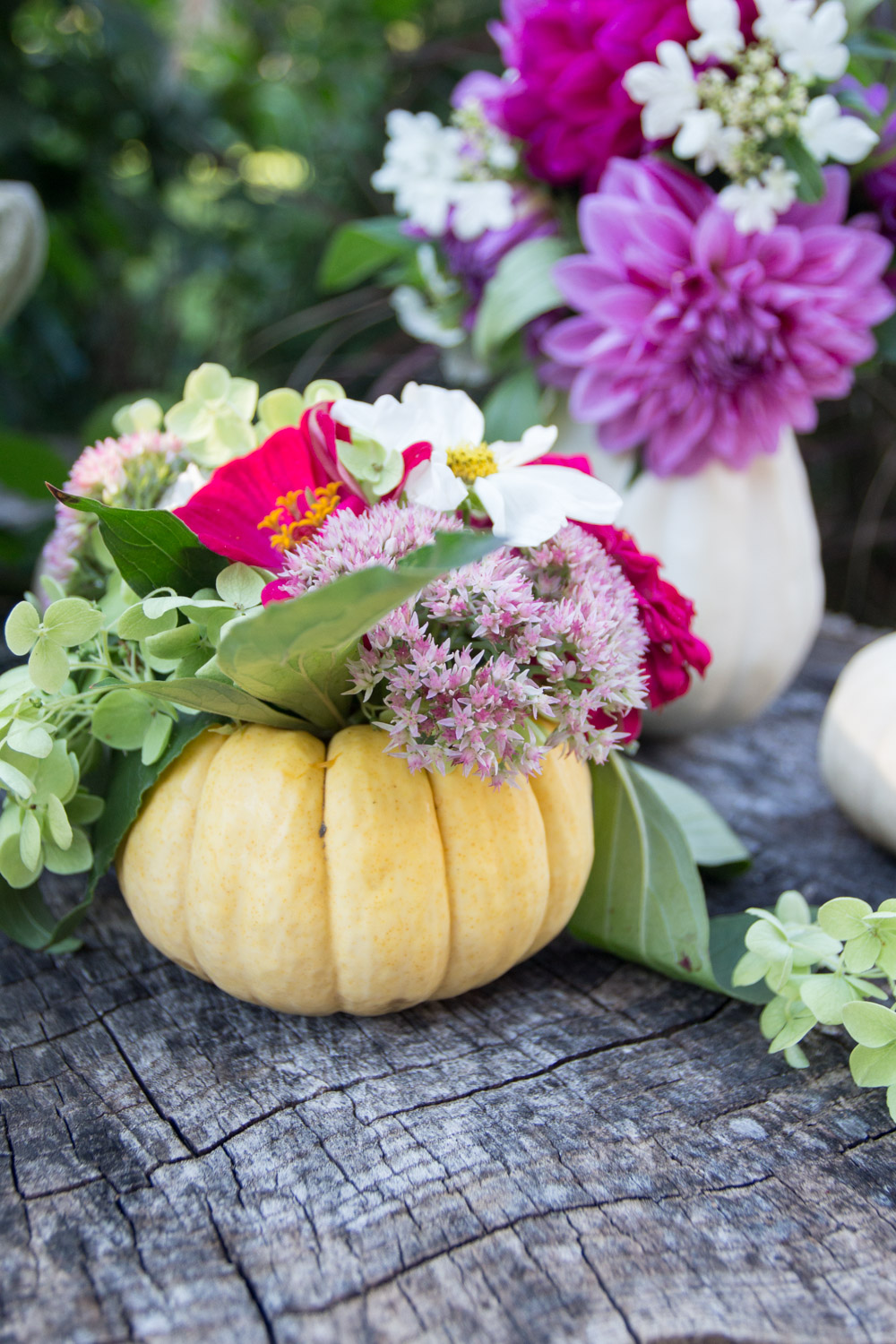 mini pumpkin flower vase
