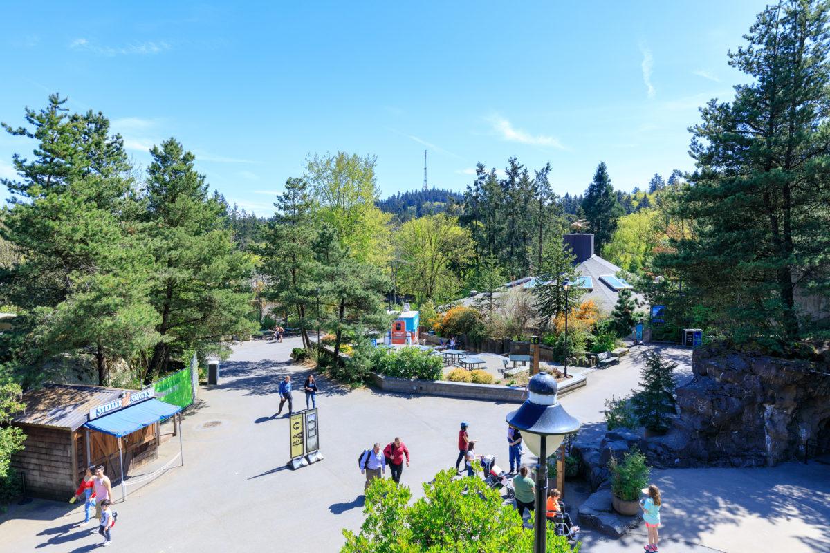 Oregon with kids, Portland, Seaside, Cannon Beach, Lincoln City, Oregon Zoo