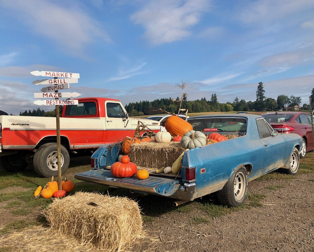 pumpkin car at Portland Pumpkin patches