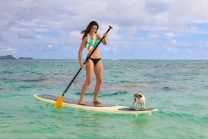 beautiful woman on her paddle board with her dog