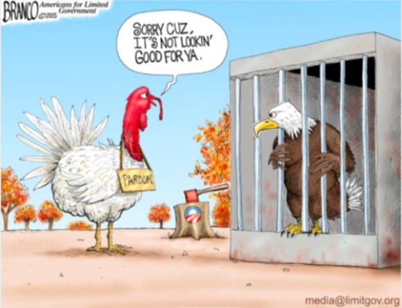 Branco Turkey copy