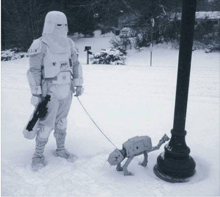 Star-Wars-dog.jpeg?resize=768,689