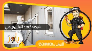 صورة شركة مكافحة الثعابين في دبي