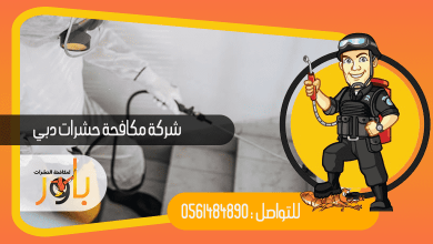 صورة ارخص شركة مكافحة حشرات دبي خصم 30% والمعتمدة من قبل البلدية