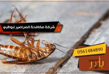 صورة شركة مكافحة الصراصير ابوظبي 0561484890 اقوي شركة رش صراصير بابوظبي مع التعقيم والتنظيف