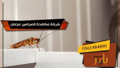 شركة مكافحة الصراصير عجمان