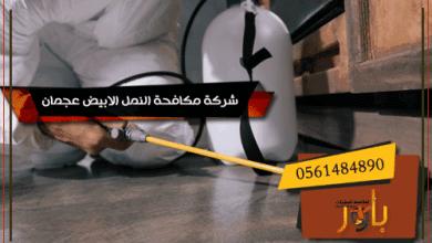 شركة مكافحة النمل الابيض عجمان