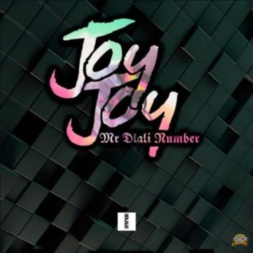 Mr Dlali Number – Joy Joy