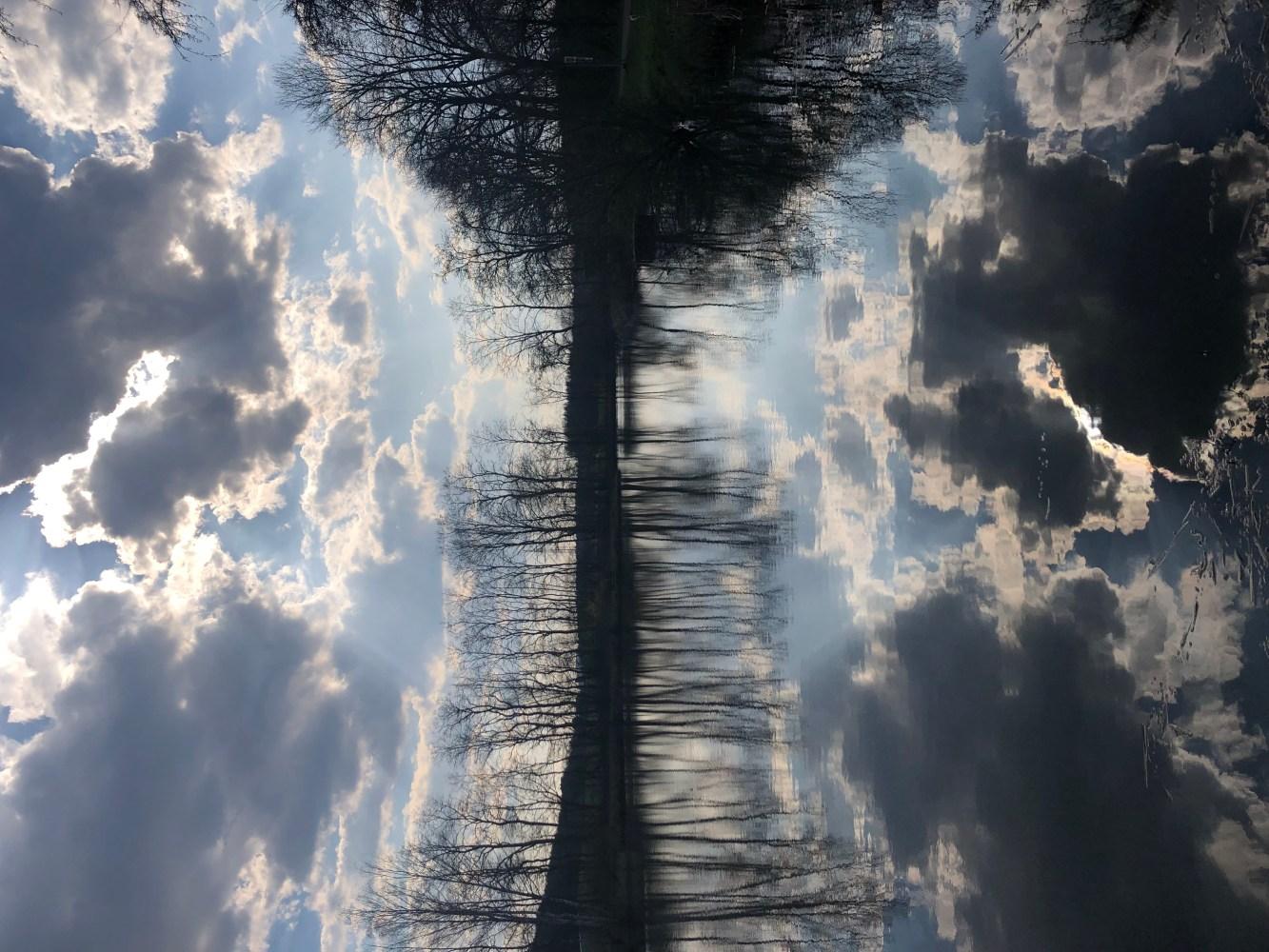Reflexion des bewölkten Himmel auf der Oberfläche eines Weihers ->perfect reflections