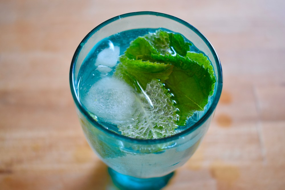 Cocktail mit Minze und Eiswürfel