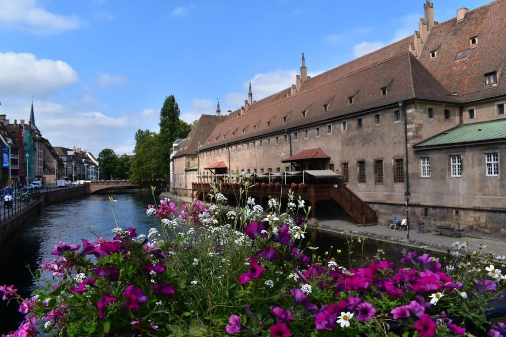 Blick über Blumen auf den Fluss neben dem l'Ancienne Douane