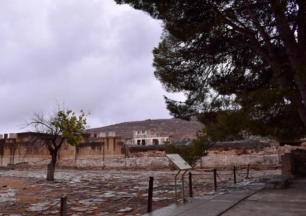Halbbewachsener Baum umgeben von den Ruinen