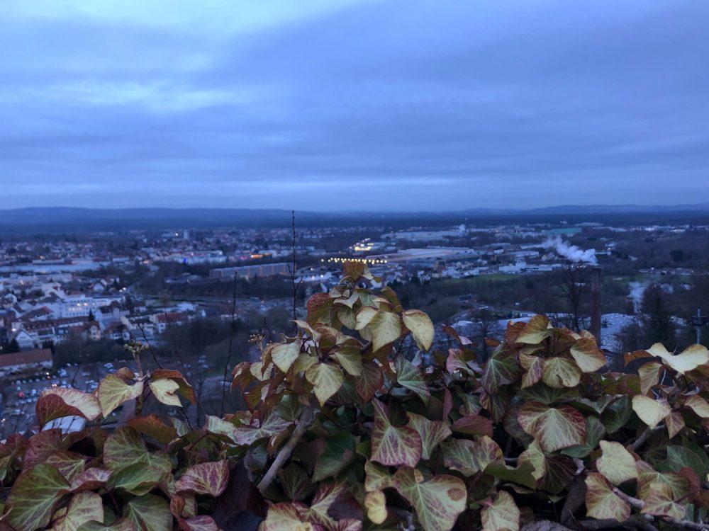 Efeu Blätter vor einer Stadt im Morgengrauen