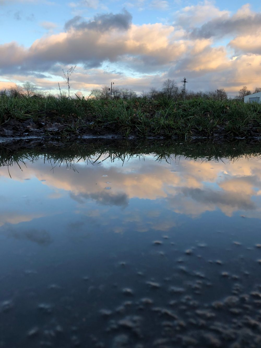 Reflexion des Himmels am frühen Abend auf einer Pfütze