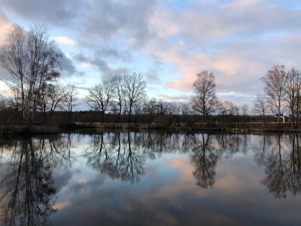 Spiegelung der Bäume und des Himmels auf dem Wasser