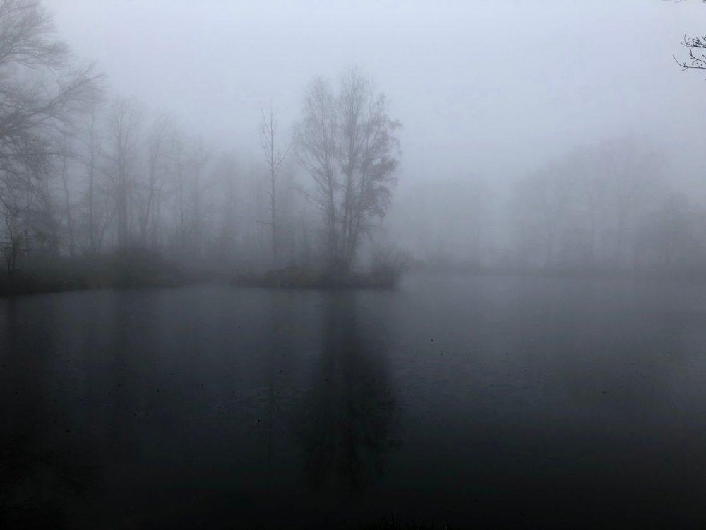 Kleiner Weiher im Nebelschleier
