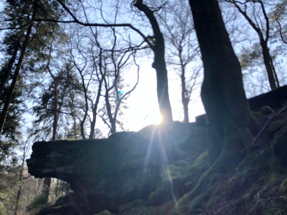 Sonnenstrahlen im Kirkeler Wald